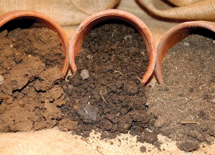 сорта почвы