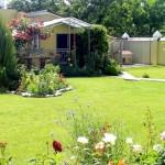 садовый дизайн газон