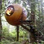 шарообразный дом на дереве