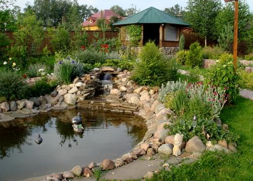 водоем в ландшафтном дизайне