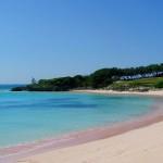 Pink Sands Beach пляжи мира