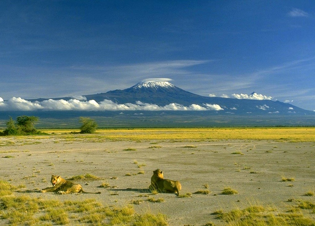 вулкана Килиманджаро, Танзания, Африка