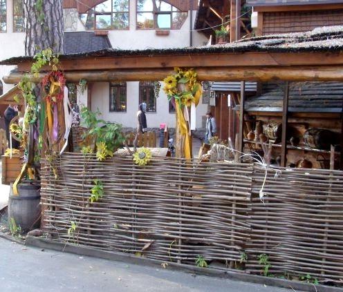 забор плетеный для дачи 3