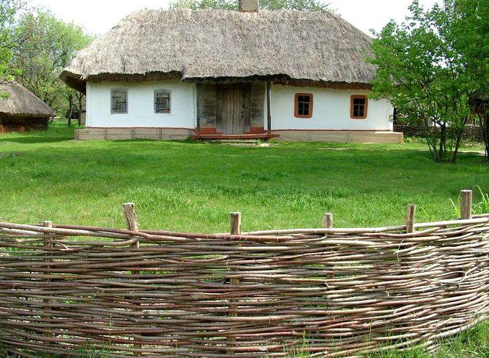 забор плетеный для дачи 4