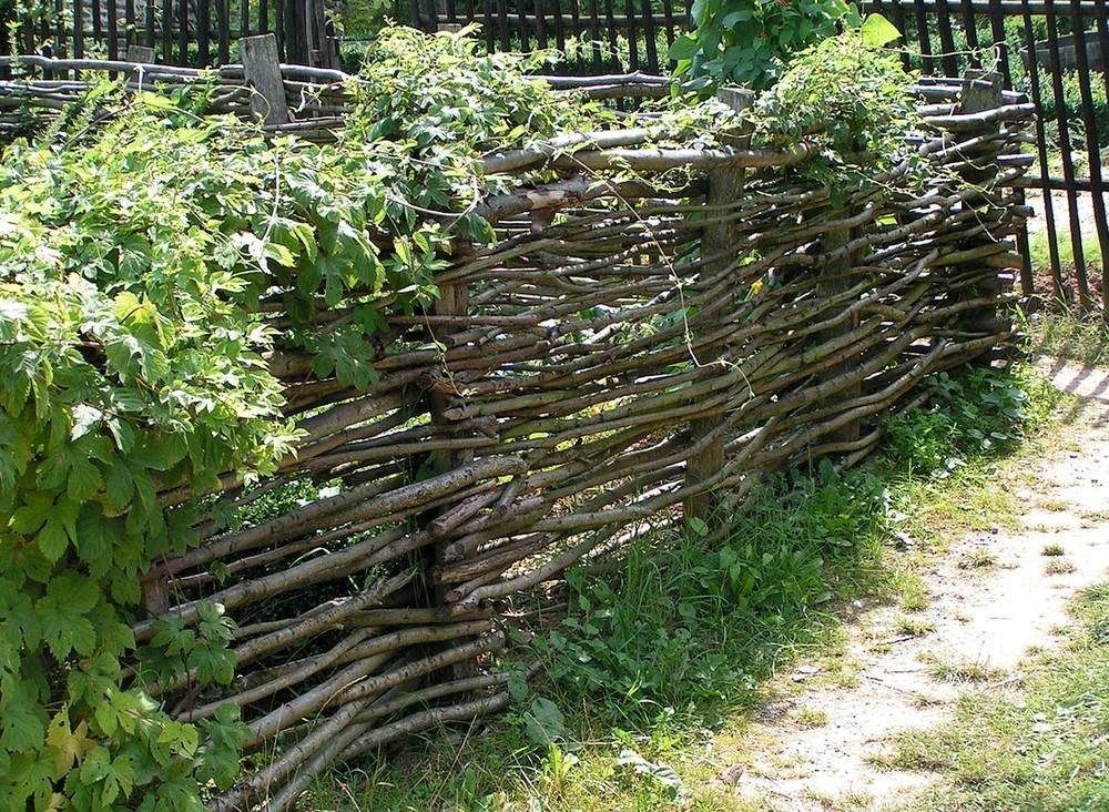 забор плетеный