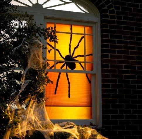 паук в окне, хэллоуин