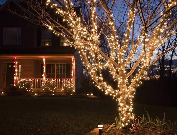 освещение гирляндами дерева