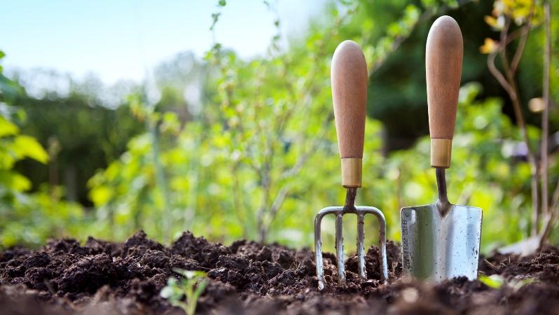 работы в саду и огороде 2018
