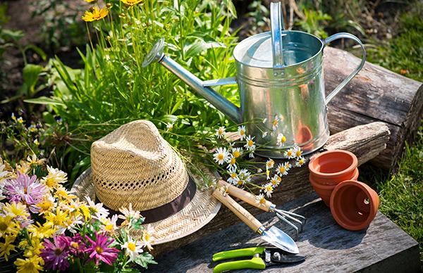 Уход за садом летом