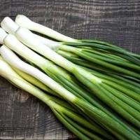 Как вырастить лук на зелень в опилках