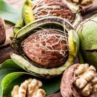 Как посадить грецкий орех2