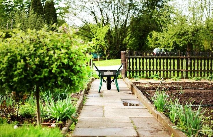 Как распланировать огород