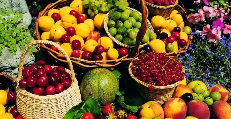 правила для хорошего урожая