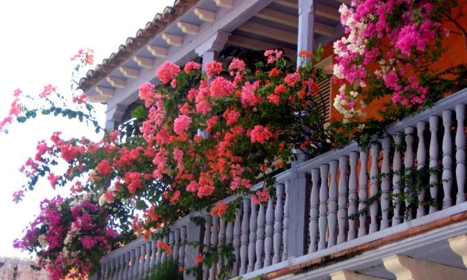 вертикалььное озеленение балкона