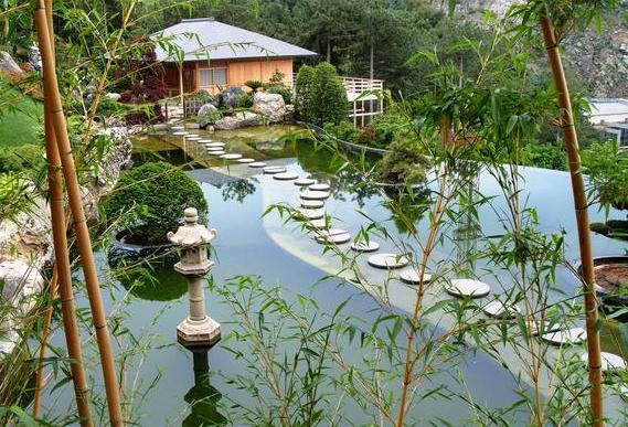 японский сад бамбук