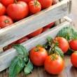 Удобрение из дрожжей и йода для помидоров